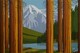 """Looking out at Mt. Robson"""